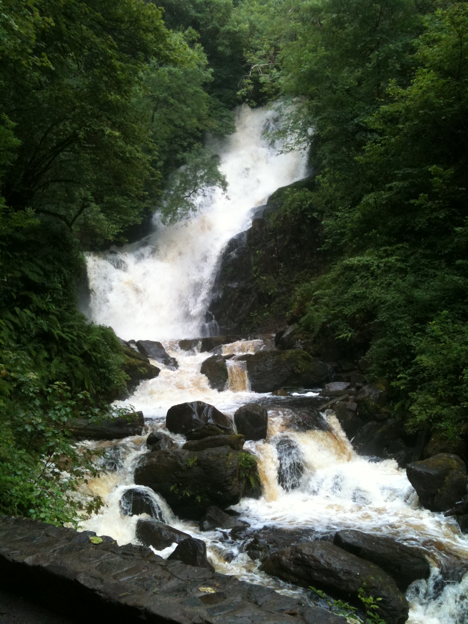 Torc Waterfall Loop Walking Route From Muckross House