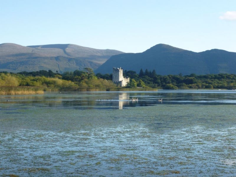 Ross Castle with Mangerton and Torc