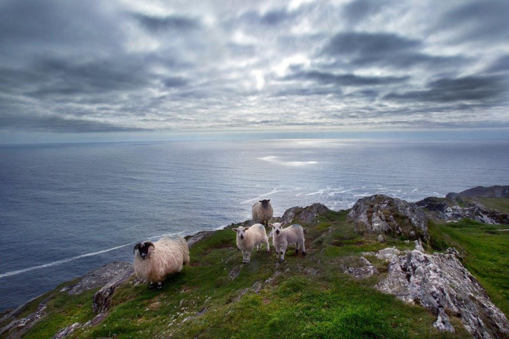 Sheep's Head Drive, Bantry on the Wild Atlantic Way by Valerie O'Sullivan
