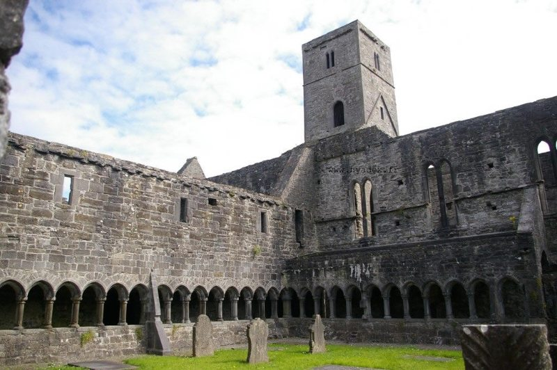 Sligo Abbey and Dominican Friary