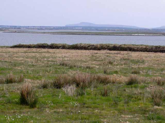 Barranagh-Island-c.oliverdixon_ccl