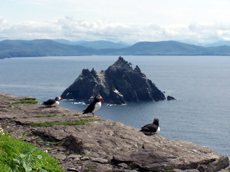 Skellig Islands UNESCO World Heritage Site, Puffin and Gannet Colony and Star Wars VII The Force Awakens on the Wild Atlantic Way, Ireland
