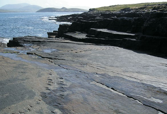 Tetrapod-Tracks-Seascape2