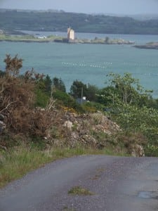 Rossbrin Loop Walk, Roaring water bay, West Cork