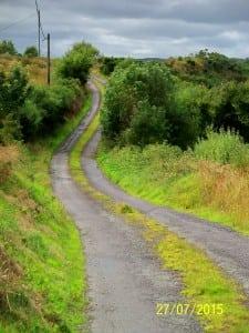 Derreenard Loop Walk - lovely rural roads