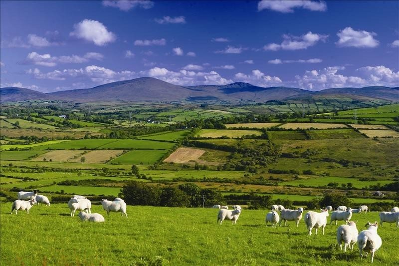 A view on the Sperrins Scenic Drive from Clady, Co. Tyrone